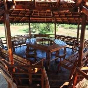 Birdofparaidse_treehouse_balcony